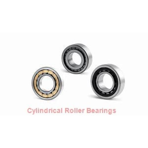 NTN  SL01-4944 SL Type Cylindrical Roller Bearings   #1 image